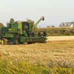 Le temps des récoltes à Saint-Joachim
